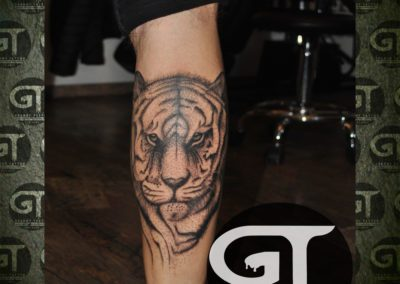 tigru Cristi